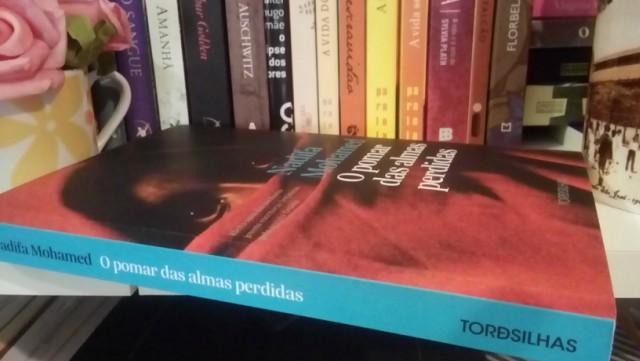 O-Pomar-das-Almas-Perdidas-Minha-Vida-Literaria3