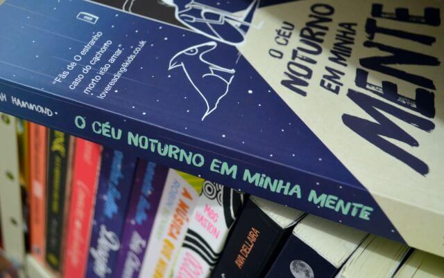 o-ceu-noturno-em-minha-mente-sarah-hammond-minha-vida-literaria3