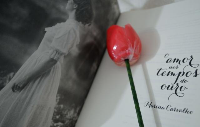o-amor-nos-tempos-do-ouro-marina-carvalho-minha-vida-literaria3