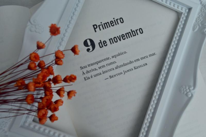 novembro-9-colleen-hoover-minha-vida-literaria3