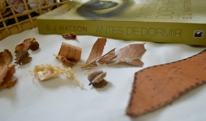 antes-de-dormir-sj-watson-minha-vida-literaria3
